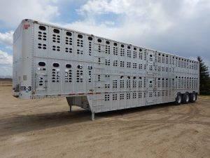 wilson-tridem-livestock-trailer-1